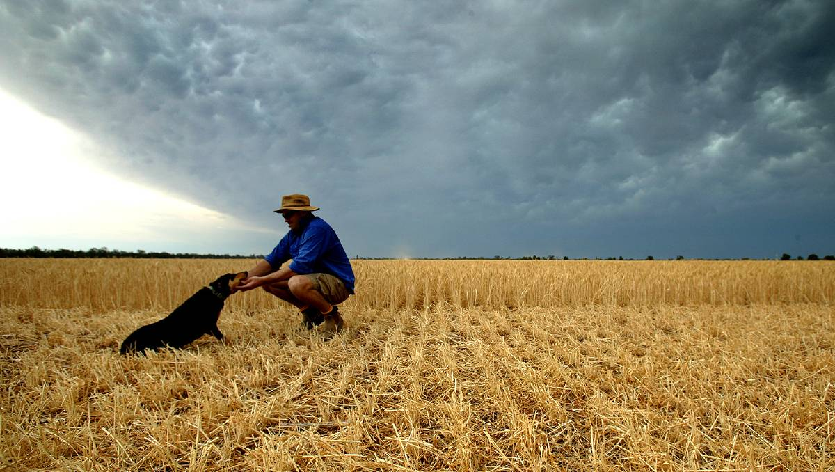 The right to farm has been protected by law in NSW that will be enacted at the start of 2020.